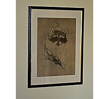 WHO IS THAT MASKED ANIMAL Photographic Print