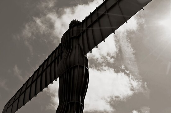 Angel in Mono by Carol Bleasdale