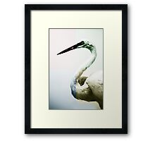Quadrant Colour Bird Minimalist Modern Art Nature Photography Framed Print