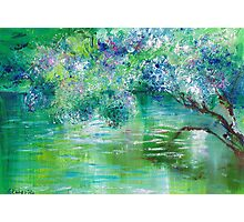 Green River Oil Painting Hand Painted Art Wall Decor by Artist Ekaterina Chernova Photographic Print