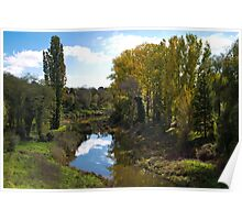 River Bank with Trees Turning to Autumn Poster