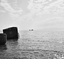 Barge on the Horizon by Emily Rose