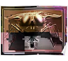 the fly captured? Poster