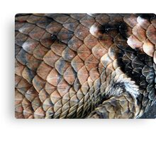 ©NS Reptile Pattern IIA Canvas Print
