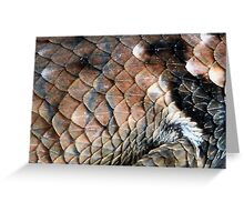 ©NS Reptile Pattern IIA Greeting Card