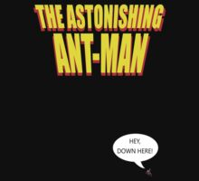 The Astonishing Ant-Man Kids Clothes