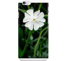 lonely flower iPhone Case/Skin