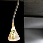 The Italian Light by Christina Backus