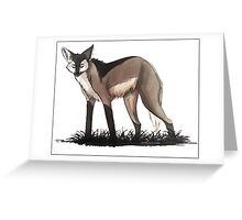 following the pack Greeting Card