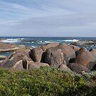 Elephant Rocks by Christina Backus