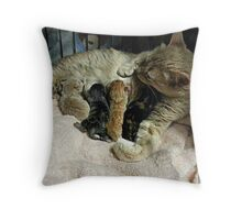 Ginger Had Her Babies Today - 21-Apr-2014 Throw Pillow