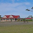 Farm house, Kangaroo Island, South Australia by Margaret  Hyde