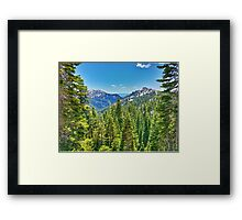 A view of a Hiker Framed Print