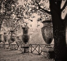 Ancient Garden by MILAKOS