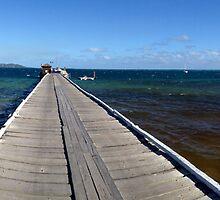 Mana Island Wharf by kcikr