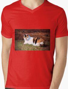 Calico Beauty Mens V-Neck T-Shirt