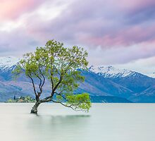 Lake Wanaka - New Zealand by Kimball Chen