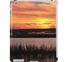 Sky Over The Marsh iPad Case/Skin