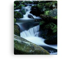 Roaring Fork River 2 Canvas Print