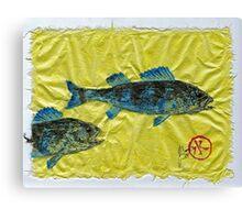 Gyotaku - Yellow Perch - Bluefish Canvas Print