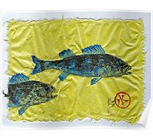 Gyotaku - Yellow Perch - Bluefish Poster