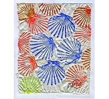 Gyotaku Scallops - Summertime Fun - Shellfish Photographic Print