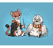 The Owl and the Weasel  Photographic Print