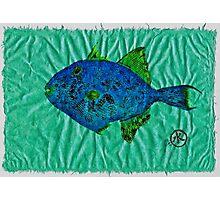 Gyotaku - Triggerfish - Queen Triggerfish Photographic Print
