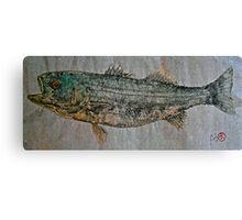 Gyotaku - Striped Bass - Rock Fish - Striper Canvas Print