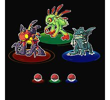Choose your starter! Photographic Print