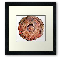 Map to the Fountain of Youth Framed Print