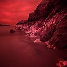 Infra Red Seaweed  by rennaisance