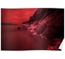 Infra Red Seaweed  Poster