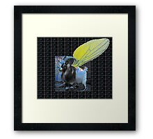 flys of Andamor suffer bird inflation Framed Print