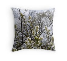 Flowering Tree at Filoli Throw Pillow