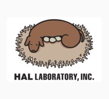 Hal Laboratory by auto2043