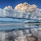 The Long White Cloud 2 by Cheryl Styles