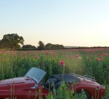 Poppy field, Classic Car Sticker