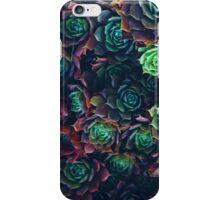 Geometric Nature iPhone Case/Skin