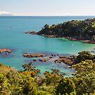 Waiheke Island - New Zealand by Kimball Chen