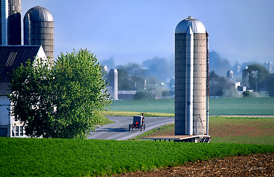 Amish Country  by Dyle Warren