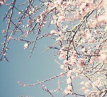 Vintage spring by Scarlet .