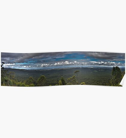 Rainforest Panorama - NSW - Australia Poster