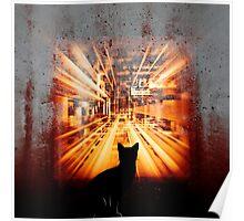 black cat galleries Poster
