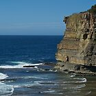 Edge of the cliff: Terrigal by mypic
