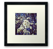 Spring InstaFlower Framed Print