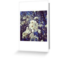 Spring InstaFlower Greeting Card