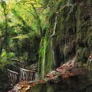 Forest Pond by V-Light