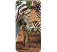 Zebras in the Dust iPhone Case/Skin