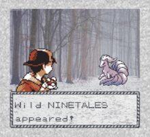 Ninetales Encounter by Alexander S